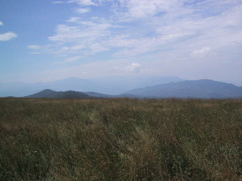 The view from the top of Max Patch